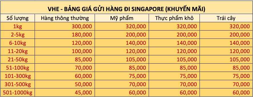 Bảng giá gửi hàng Singapore - Công ty gửi hàng nhanh VHE Logistics